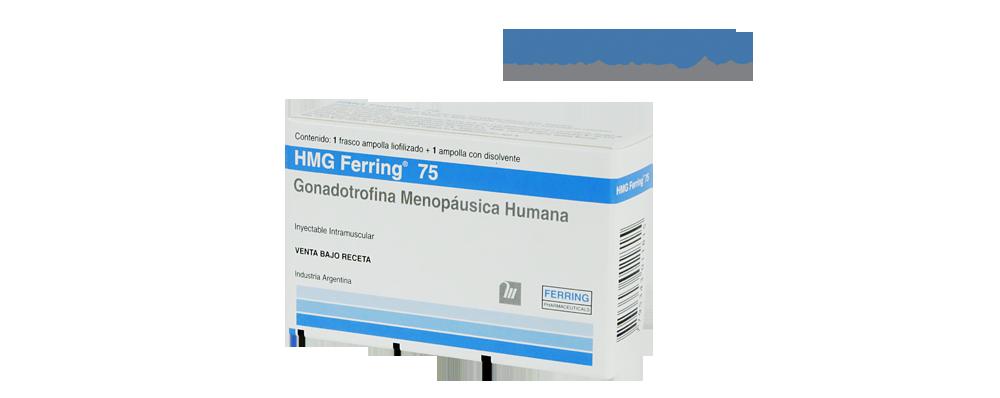 HMG-Fondo-Transparente